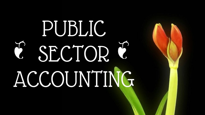 Course Image ACC412- PUBLIC SECTOR ACCOUNTING
